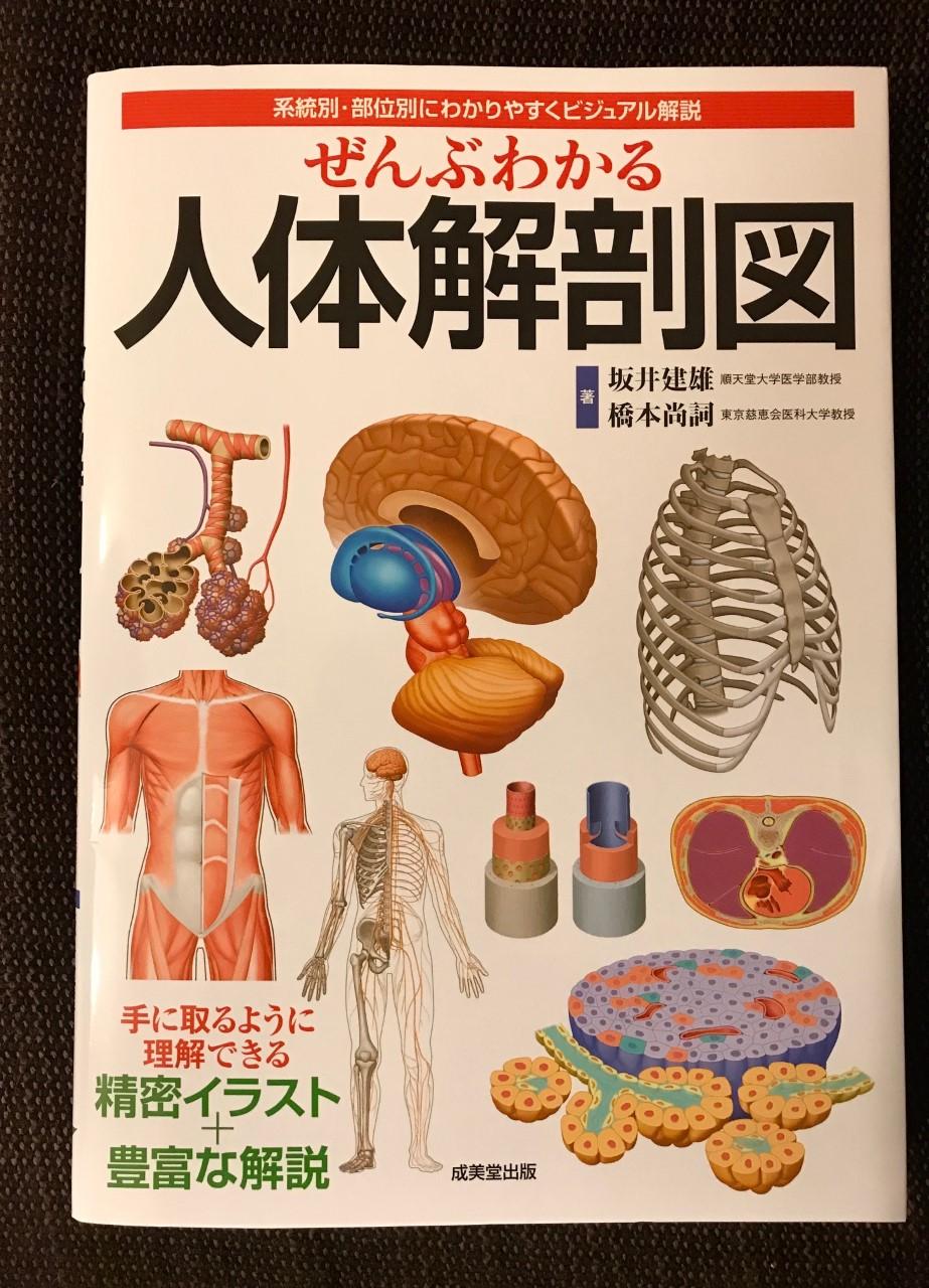 解剖生理学に目覚めまして