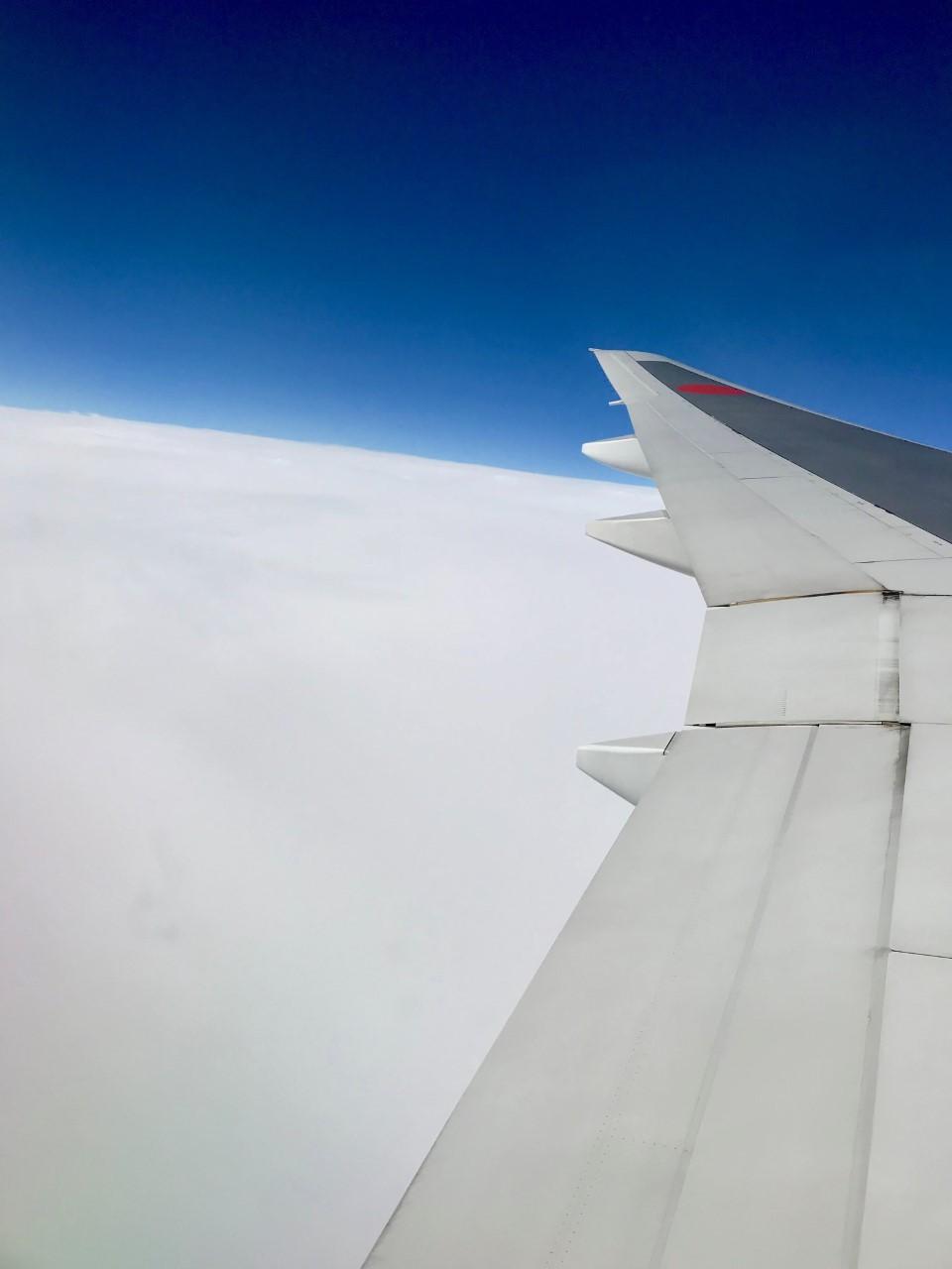 母と札幌へ〜飛行機恐怖症な私