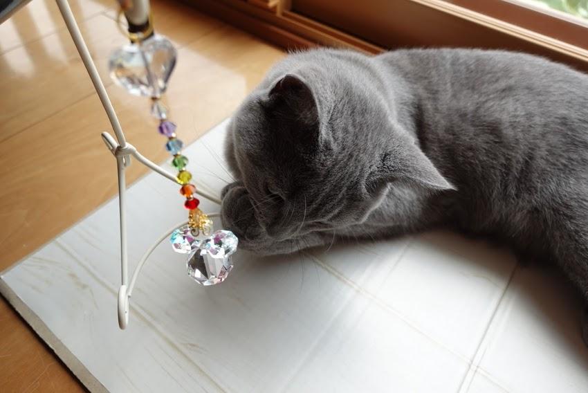 子猫&天使のサンキャッチャー